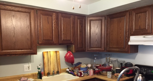 brown-cabinet-first-pic